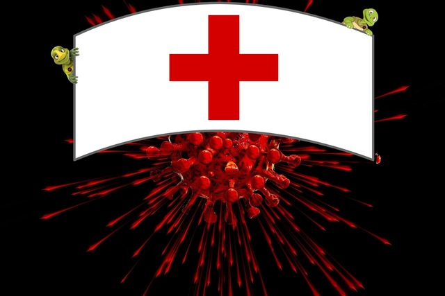 Cruz Vermelha Brasileira – Filial Minas Gerais em ação contra Covid-19