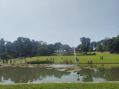 Piknik di Kebun Raya Bogor