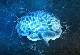 Brain Tumors : Types , Causes , Symptoms , Diagnosis And Treatment : MDLifeIndia