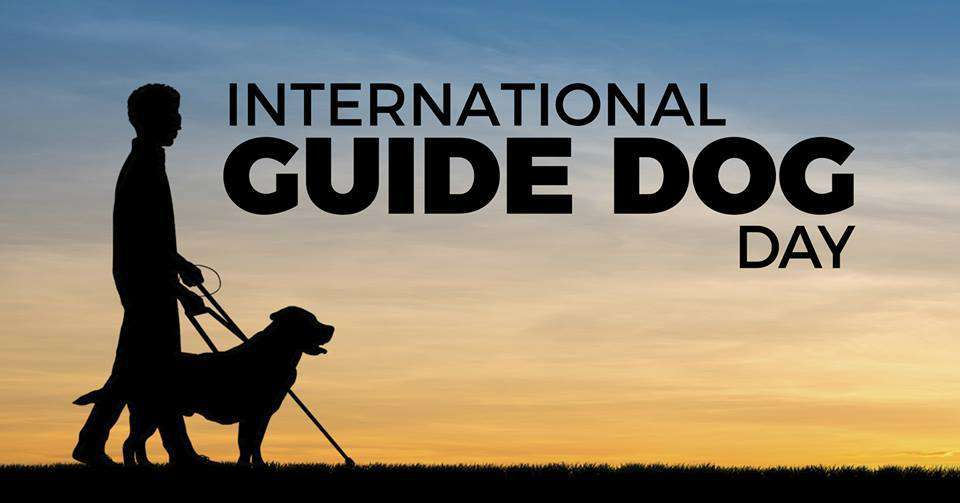 International Guide Dog Day Wishes Awesome Picture