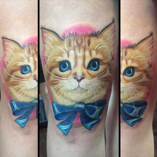 Este adorável gatinho