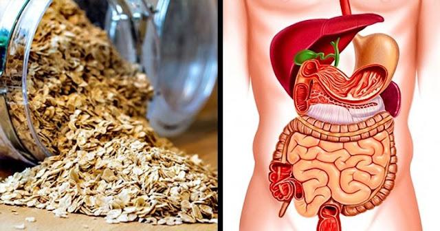 L'avoine à jeun pour améliorer la santé et augmenter l'énergie du corps