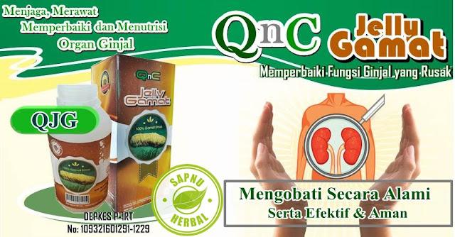 Cara Menyembuhkan Nefritis / Peradangan Pada Ginjal dengan Obat Radang Ginjal Herbal QnC Jelly Gamat
