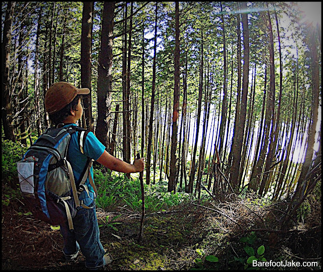 Backpacking Olympic Coast with Kids