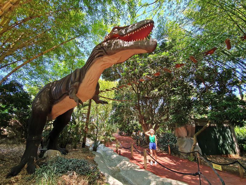 Vale dos Dinossauros - Dreams Park Show