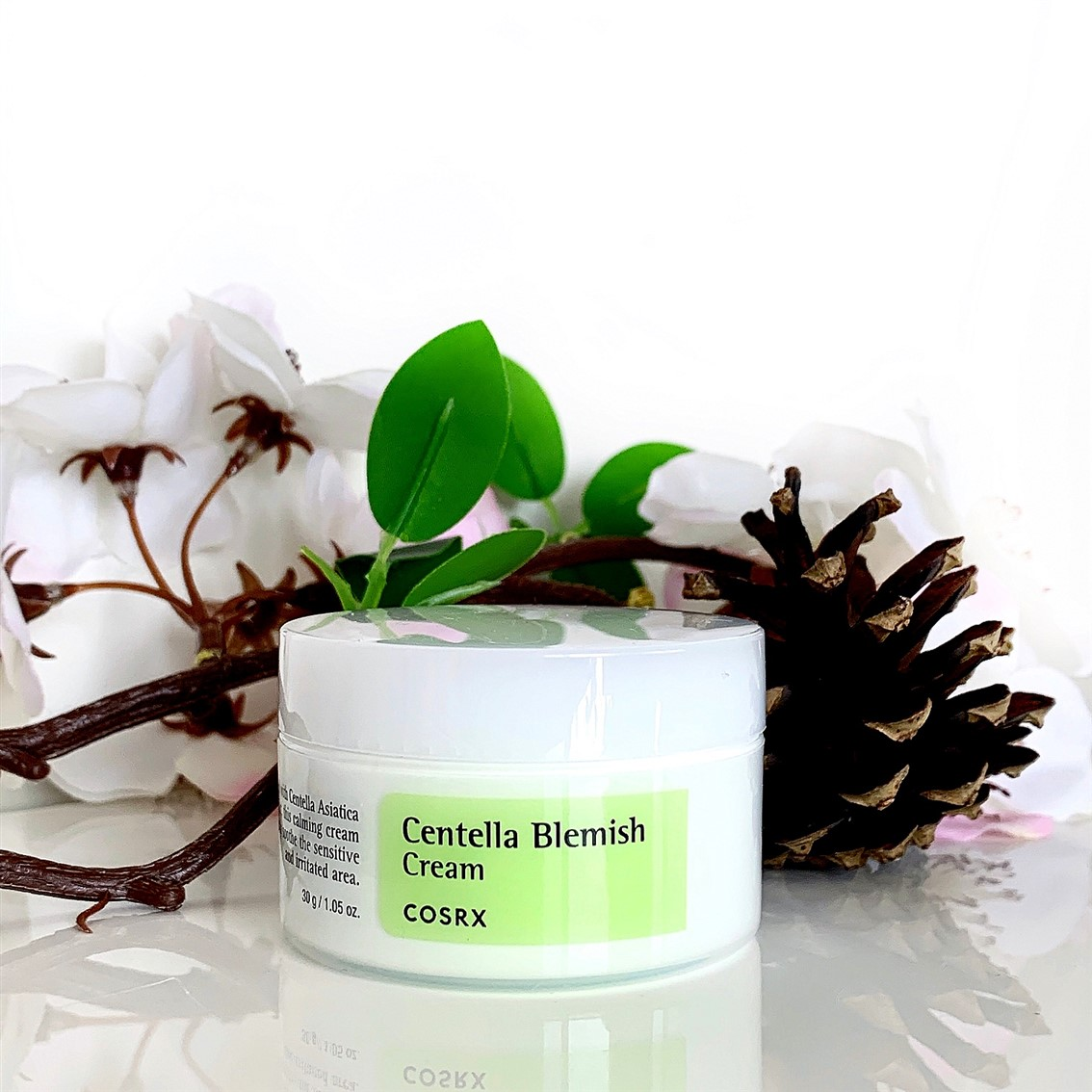 COSRX Centella Blemish Cream blog