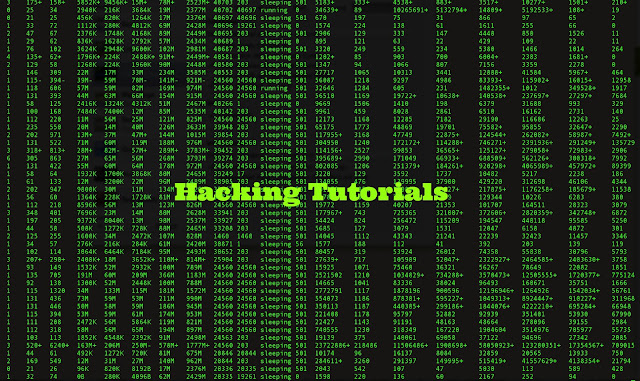 Basics pdf hacking ethical