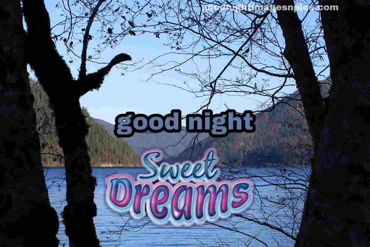 HD Good Night Lovely Images
