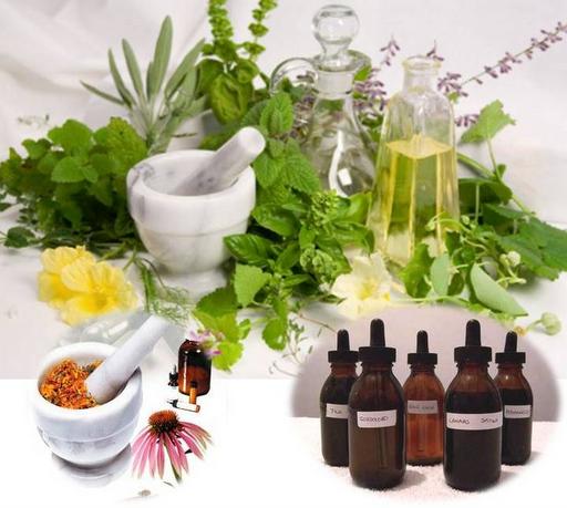 Medicina alternativa y farmacia natural los beneficios de for Planta decorativa con propiedades medicinales