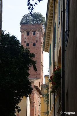 La Torre Guinigi è uno dei simboli di Lucca