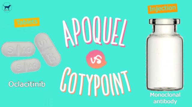 Apoquel-vs-Cytopoint-a-brief-note