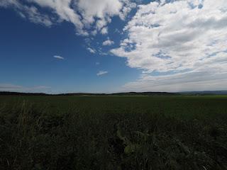 北海道らしい広大な平原