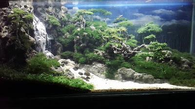 Aquascape Air Terjun Terindah