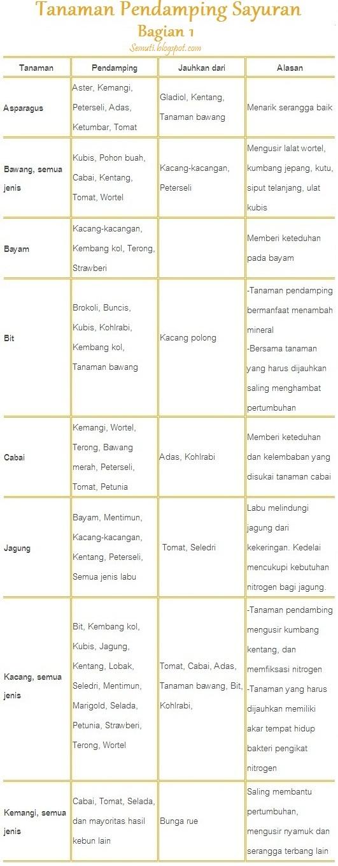 Daftar Tanaman Pendamping untuk Sayuran Sehat Bebas Hama. Bagian 1