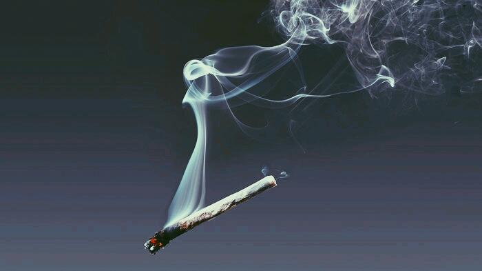 तम्बाकू के दुष्परिणाम consequences of Tobacco in Hindi