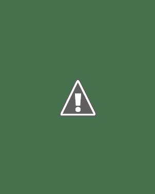 Hailey Leigh Wiki