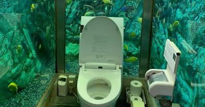 Bak buang air di tengah akuarium super besar, lengkap dengan ikan-ikan.