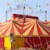 Il Circo Busnelli Niuman riapre a capienza dimezzata