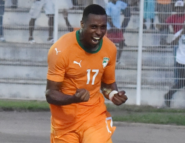 AFCON: Cote d'Ivoire And Mali Succeed In Their Matches