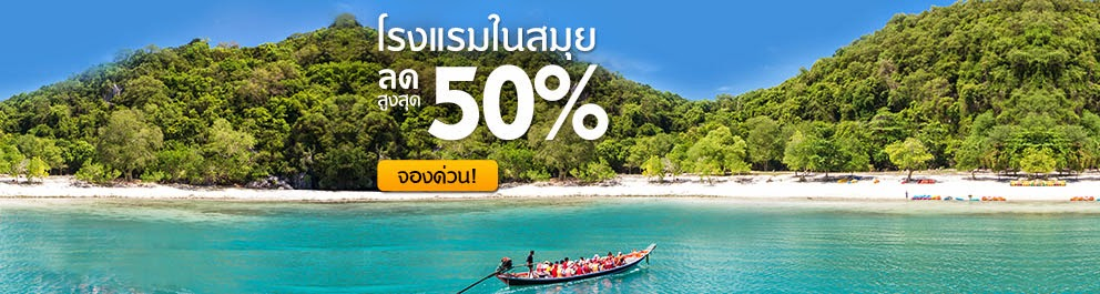 Half Day Snorkeling and Sightseeing Dolphin Tour by speedboat at Khanom Area nearby Koh Samui