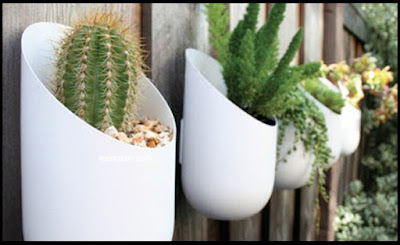 Cara Menata Pot Bunga di Teras Rumah Sederhana