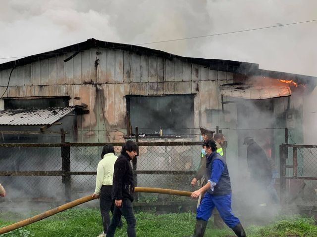 Incendio en Río Bueno