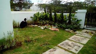 Tukang Perawatan Taman Rumah di Gading Serpong,Jasa Perawatan Taman Rumah di Gading Serpong