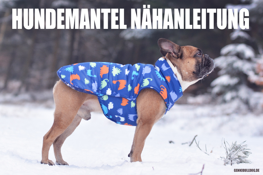 HUNDEBLOG GENKI BULLDOG : Anleitung: Hundemantel selbst ...
