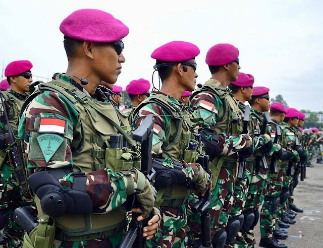 atribut TNI