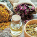 Benefits of herbs and their importance in medication