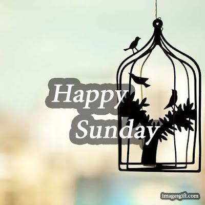happy sunday images hd 1080p