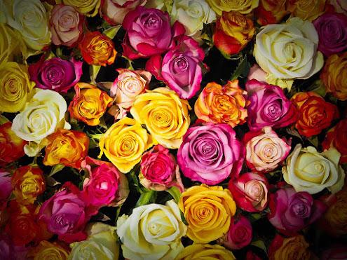 أحلى الورود ورق حائط 20