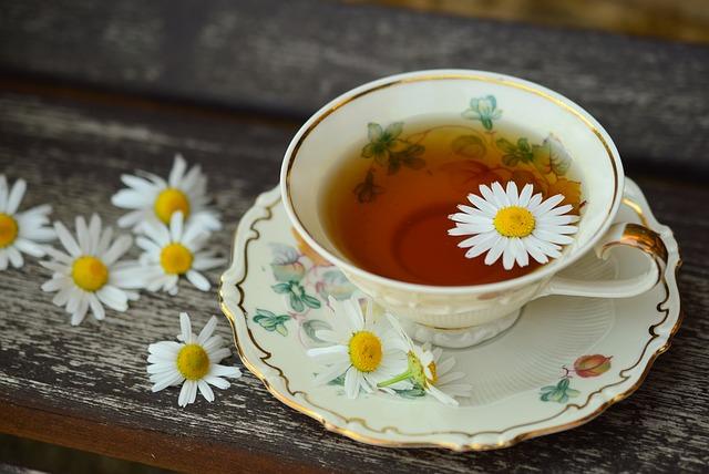 Manfaat teh hijau dan Macam-macam Teh bisa Bakar Lemak Saat Tidur