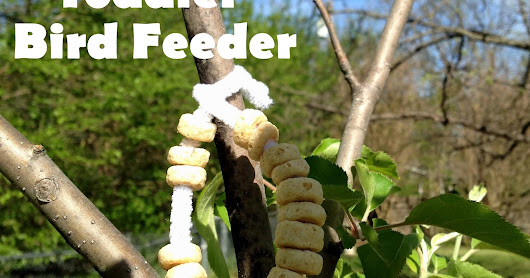 Toddler Bird Feeders