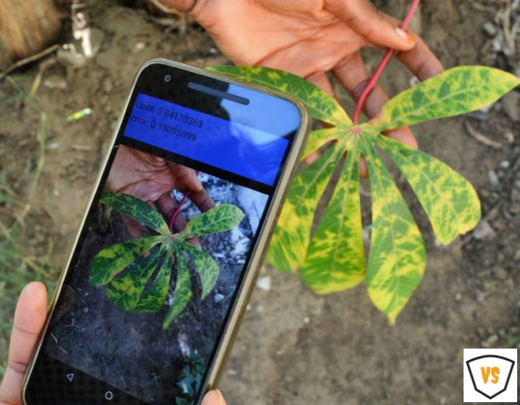 ICT in plant pathology