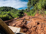Aceh Kehilangan Tutupan Hutan Perhari 41 Hektar