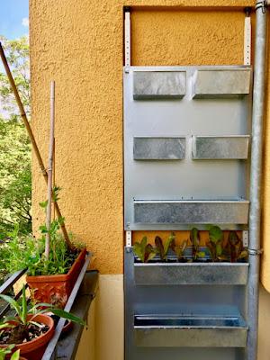 Vertikalgarten aus verzinktem Blech