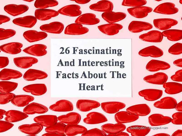 Fascinating And Interesting Facts About The Heart