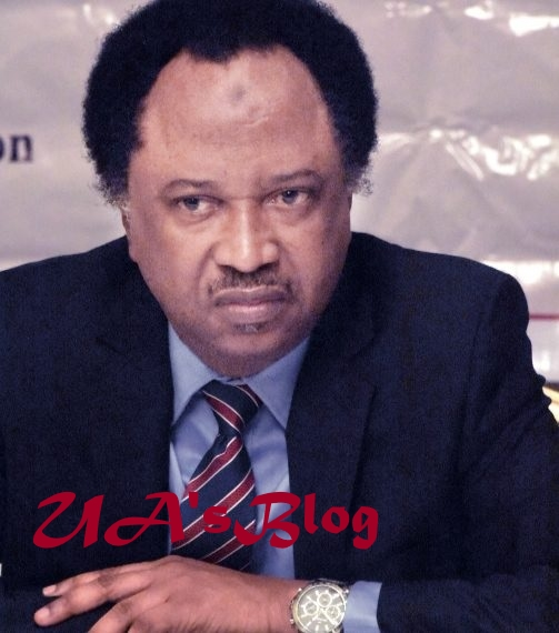 How Oyegun destroyed APC – Shehu Sani