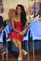 Katrina Karina Madhyalo Kamal Haasan movie Launch event March 2017 006.JPG