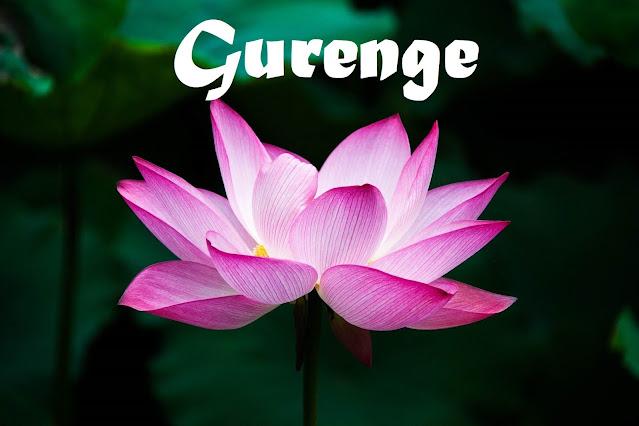 LiSA - 紅蓮華 (Gurenge) Lyrics English Meaning