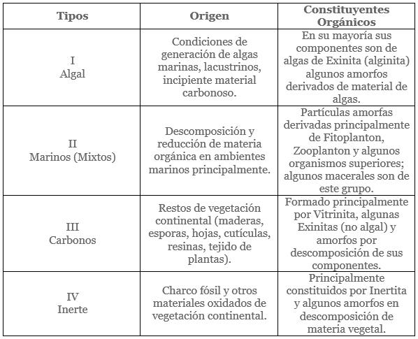 Origen de los Hidrocarburos - Tipos de kerogeno