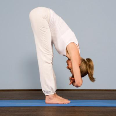 yoga and meditation studio palm beach 4221 yoga asana