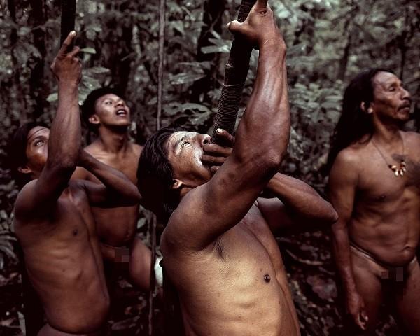 Bộ tộc Huaorani che tờ chim bằng lá cây 13