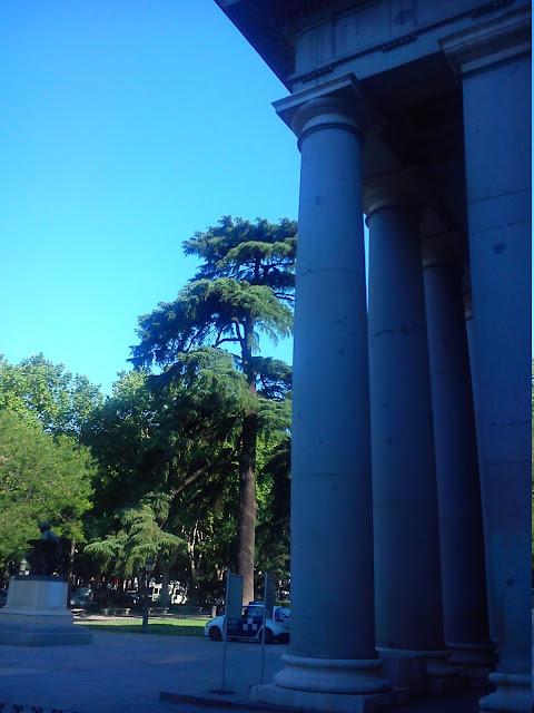 Por la calle de alcal tiziano 1485 1576 for Calle prado camacho 8