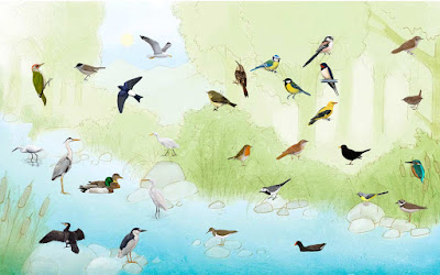 Birds Voice Amazing Technology Touch Anywhere Voice Link