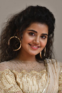Anupama Parameswaran Photos at Rakshasudu Movie Press Meet