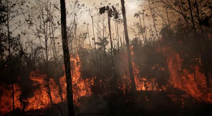 Le Brésil se prépare mais ne déploie pas des milliers de soldats pour lutter contre les incendies en Amazonie