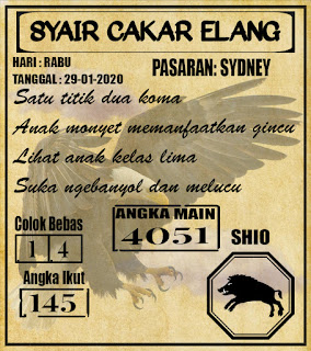 SYAIR SYDNEY 29-01-2020