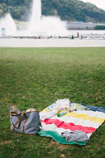 picnic at point state park in pittsburgh pa